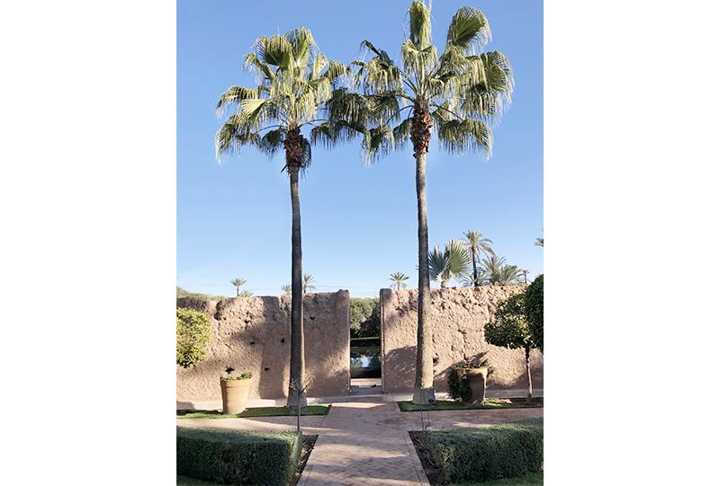 villa-prive-marrakech9